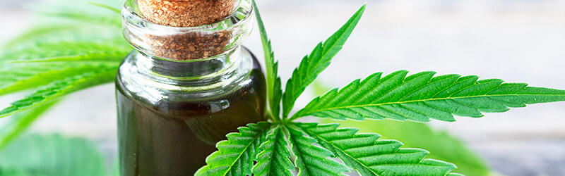CBD oil in a bottle next to a hemp leaf. Buy hemp oil online USA.